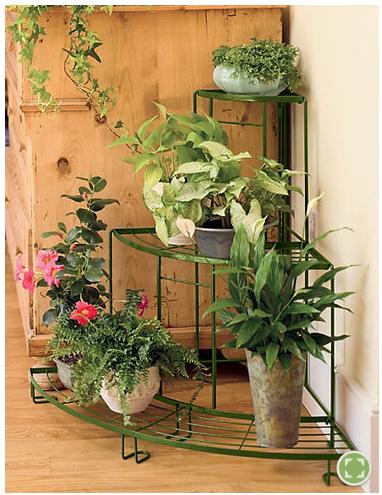 plantas y flores soportes decorativos para plantas