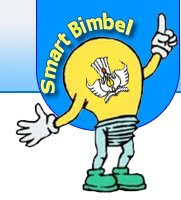 BIMBEL SMART ON LINE