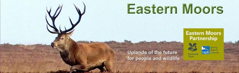 Eastern Moors
