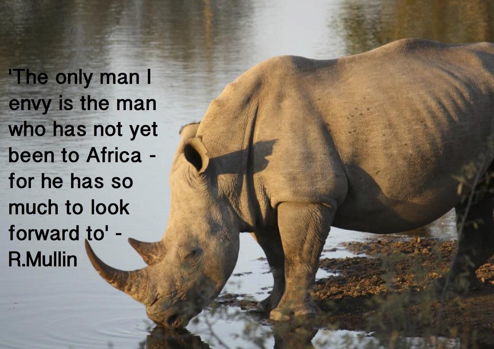 Rhinoceros Quotes. QuotesGram