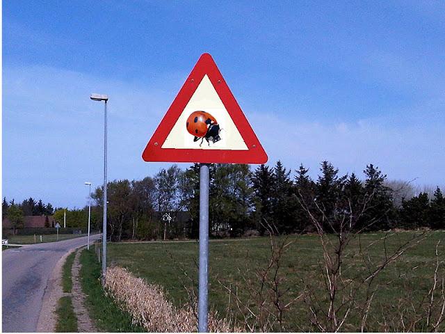 Bilder-Bibliothek: Lustige Verkehrsschilder - Witzige ...