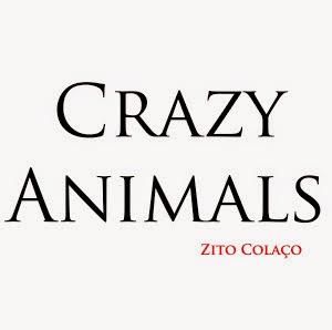 Livro Crazy Animals