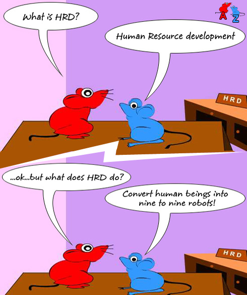 training human resource development hrd Human resource development human resource development (hrd) is the integrated use of training, organizational development, and career development efforts to improve individual, group, and organizational effectiveness.