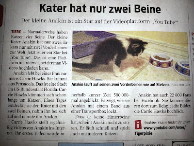 Anakin Two Legged Cat in a German Newspaper