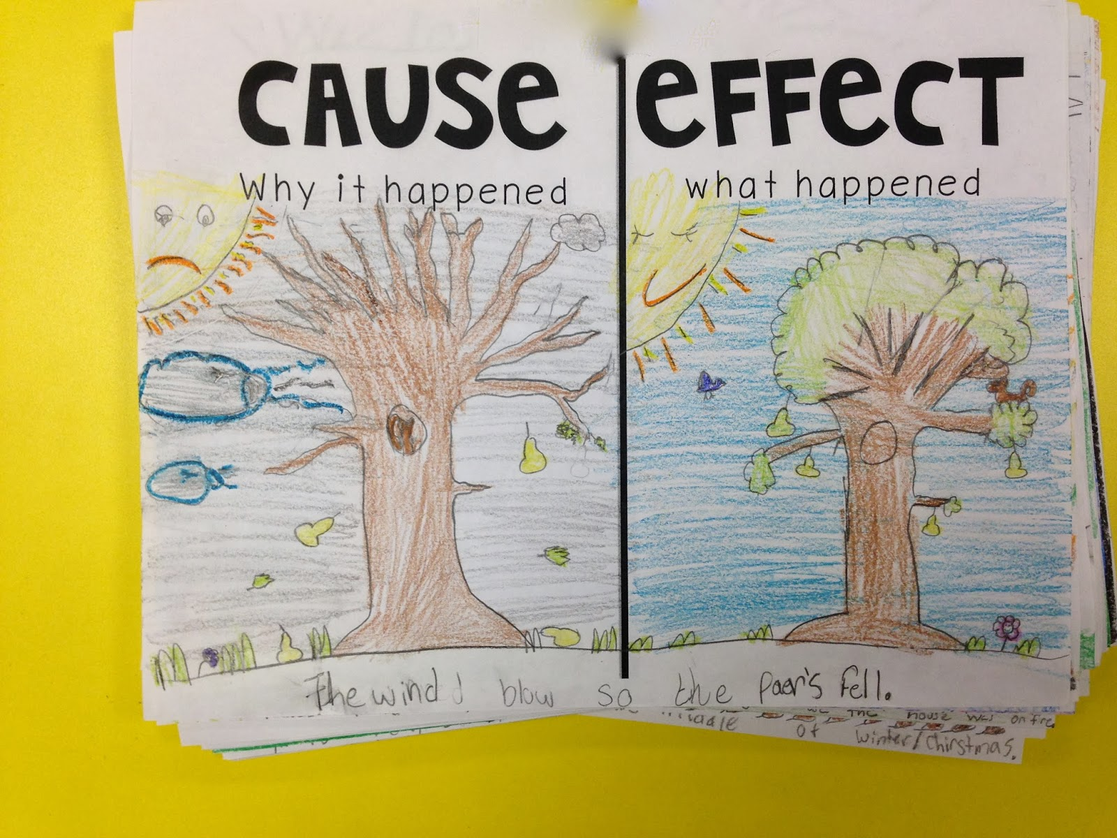 cause and effect story books