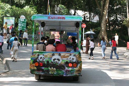 ThailandHoneymoon; Chiang Mai Zoo