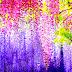 Hình Nền Đẹp - Beautiful wallpapers - Hình Nền Đẹp - Phong Cảnh Mùa Xuân