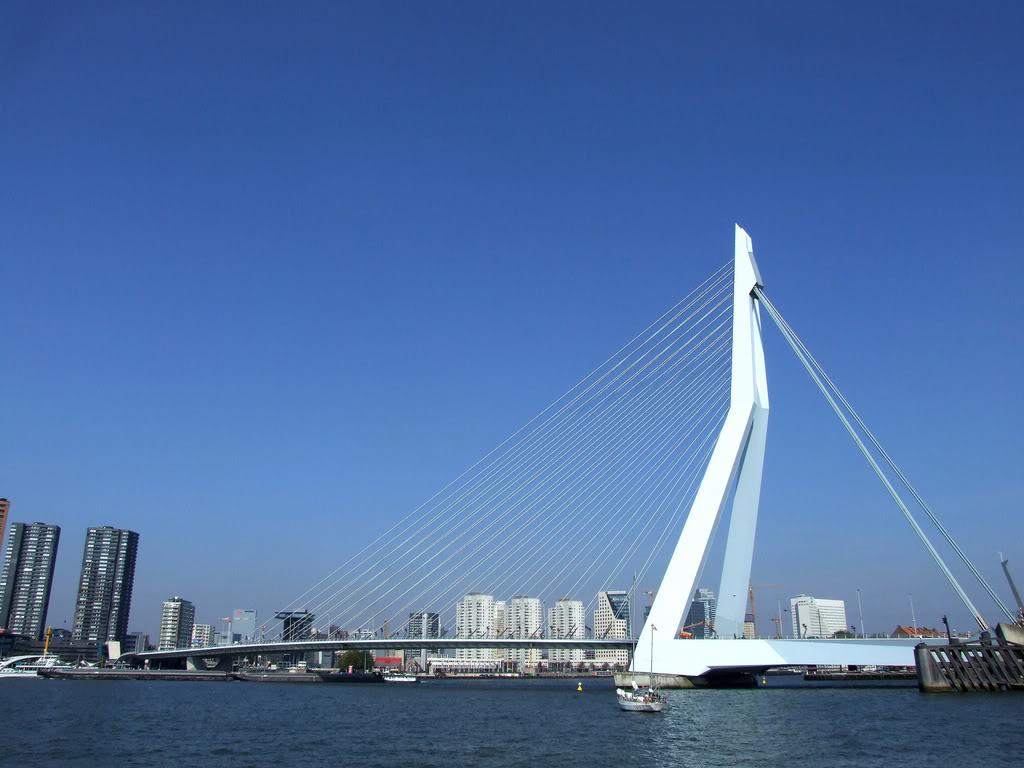 Erasmusbrug (Erasmus Bridge), Rotterdam, The Netherlands ...