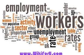 Employment 2013