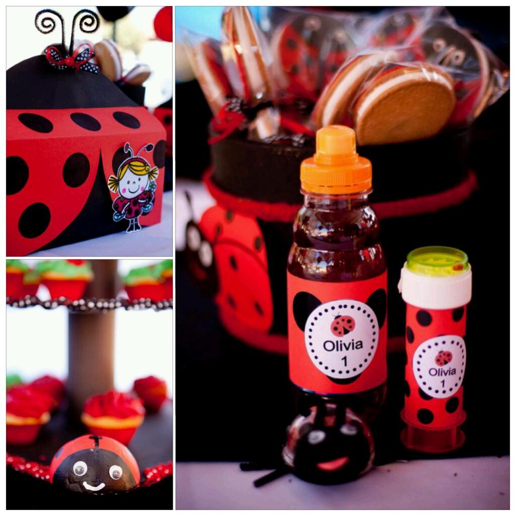 Little Ladybug Birthday Party