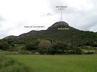 Les cingleres de Sant Salvador i el Roc de la Monja des de molt a prop de la carretera d'Avià a L'Espunyola