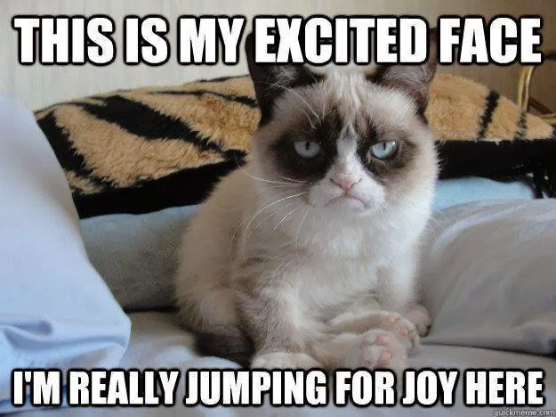 Caterville: Grumpy Cat Memes