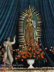 Diciembre - Virgen de Guadalupe - Templo San Francisco