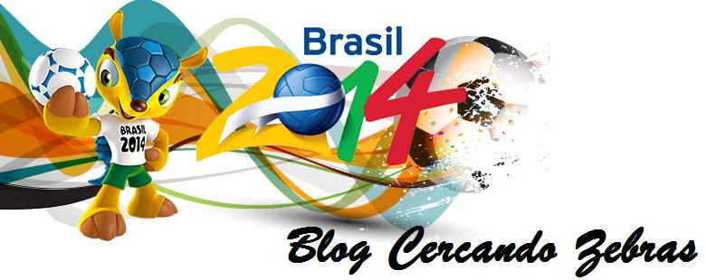 Blog CERCANDO ZEBRAS
