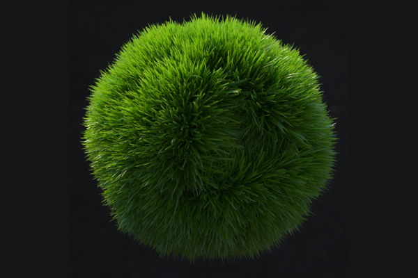 Bowl of grass