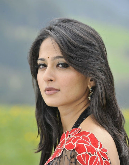 anushka in saree photo gallery