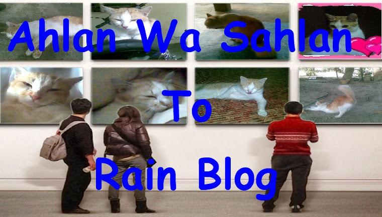 RAIN BLOG