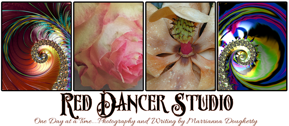 Red Dancer Studio