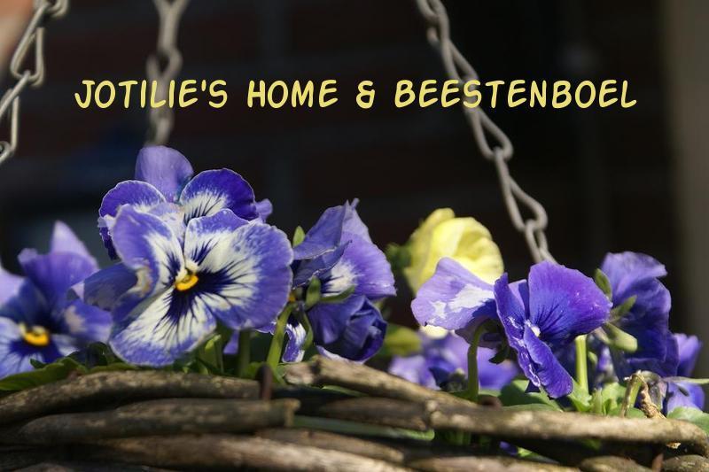 Jotilie's Home & Beestenboel