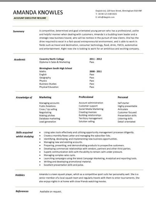 Account Executive Resume Example Executive Resume Resume And Design Com  Professional Resume Template Services Click Here