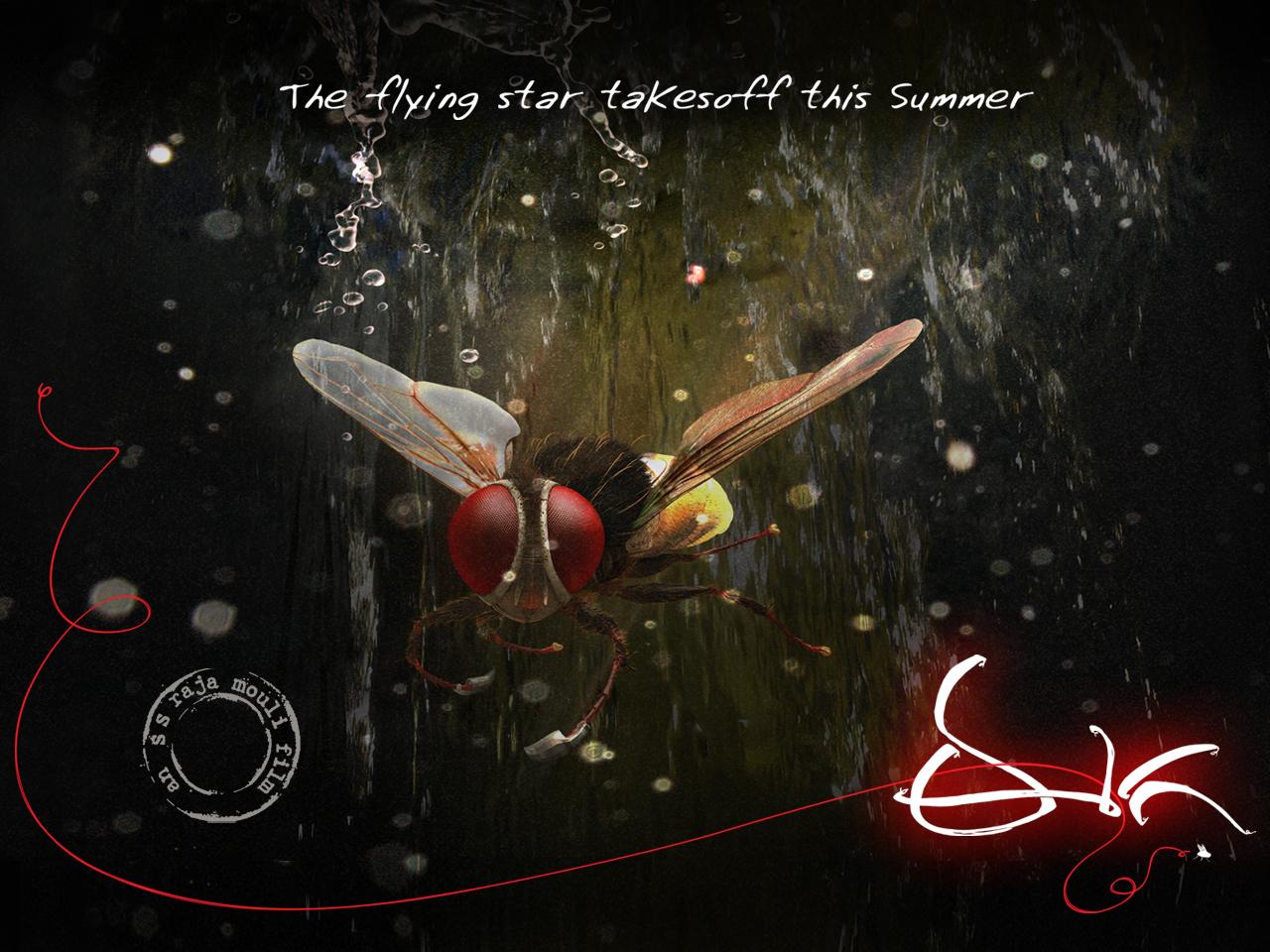 http://4.bp.blogspot.com/-g1iQIKTVsiY/T3l2lP_-IGI/AAAAAAAACOo/iabEMO63uaA/s1600/eega+posters-hd-ptl-samantha+-cinemad-70mm+(7).jpg