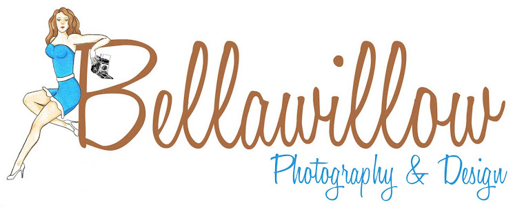 Bellawillow Shop Blog
