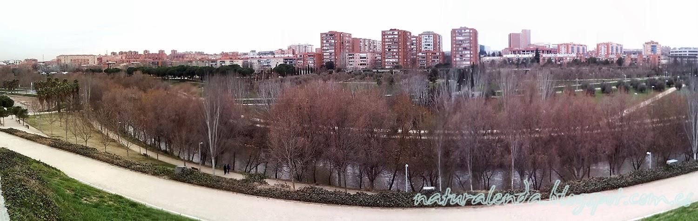 vista de Madrid desde el parque de manzanares
