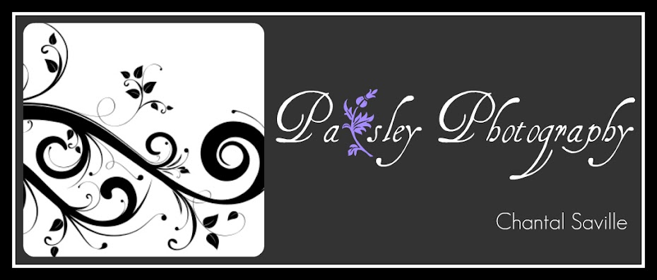 Paisley Photography