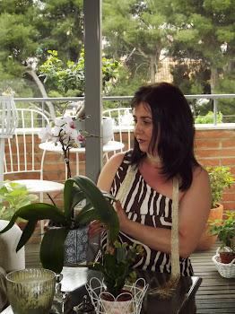 Cultivando orquídeas...