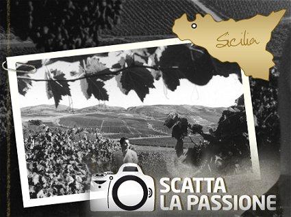 concorso viaggio Sicilia Rapitala