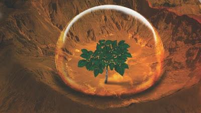 Por que a Nasa quer levar batatas para Marte