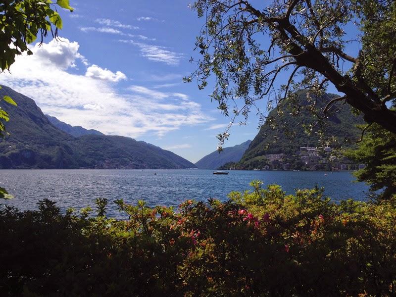 Blog we are white lions Zürich Lugano Palmen Schweiz Tessin Ticino Sonne Luganer See