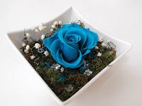 Rosas Naturales Preservadas Turquesa ¡Duran 4 Años! Santa Ana, El Salvador