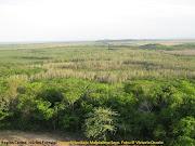 Sin embargo, no es suficiente la información generada a nivel de zonas . (ncf region caribe bajo magdalena seco)