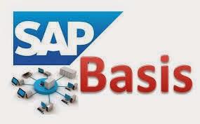 SAP BASIS Roles and Responsibilities-1 1
