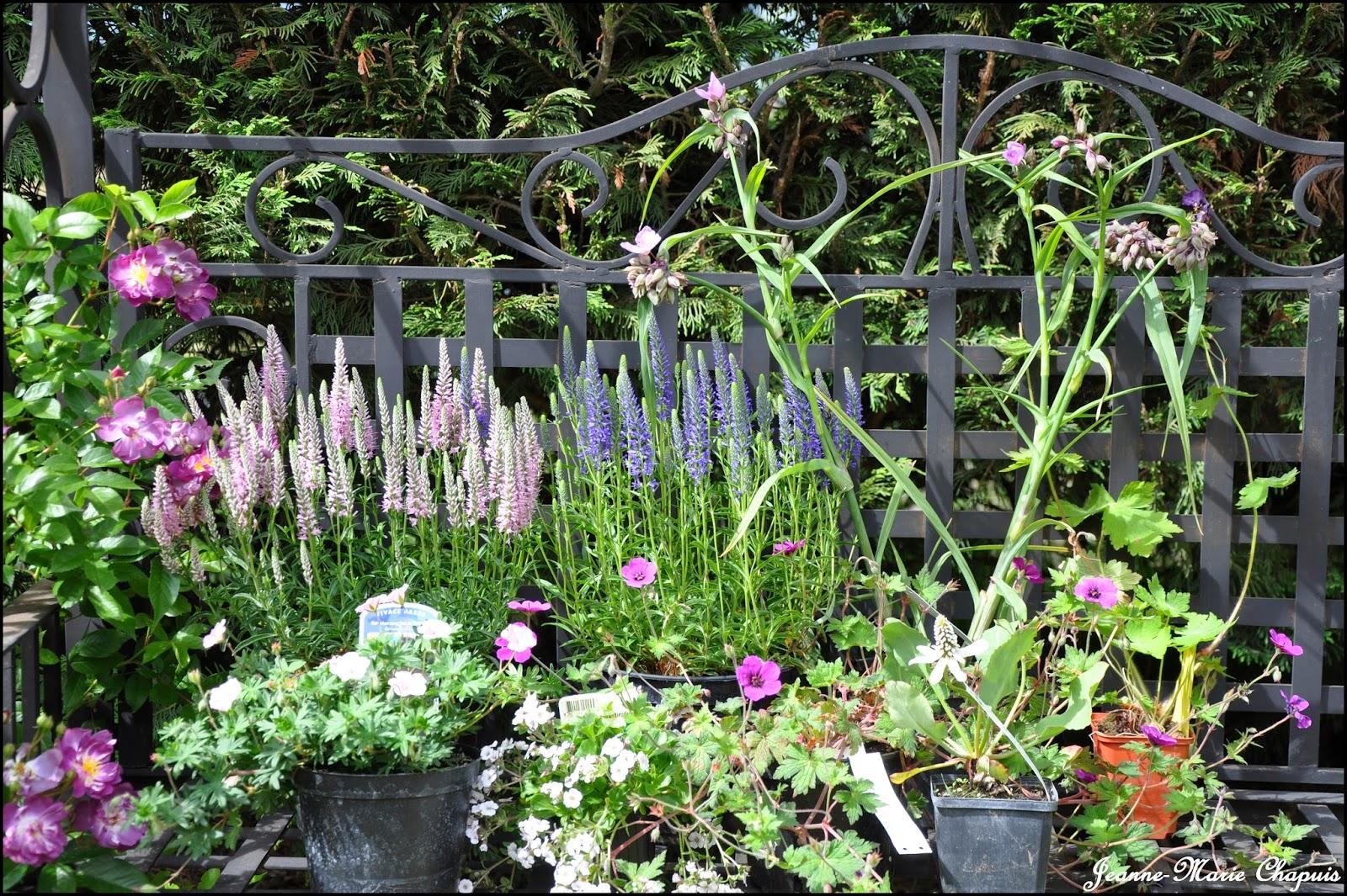 Le jardin du bois joli foire aux plantes for Jardin aux plantes