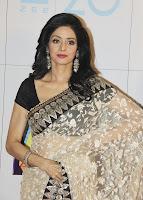 Vidya, Balan, and, Sridevi, at, Zee, Cine, Awards, 2013, desi indian hindi, saree, girl