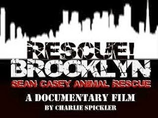 RESCUE BROOKLYN