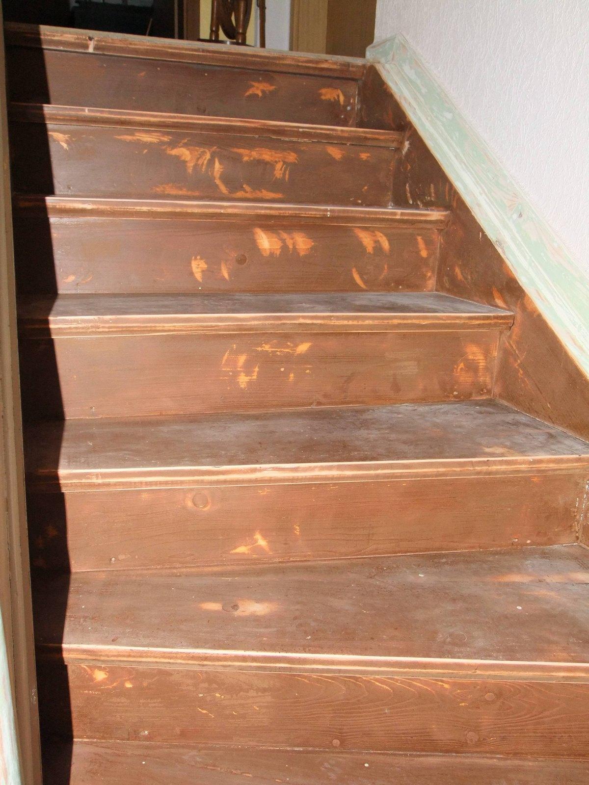 Ochsenblut Entfernen michas holzblog projektvorstellung treppenrenovierung teil 2
