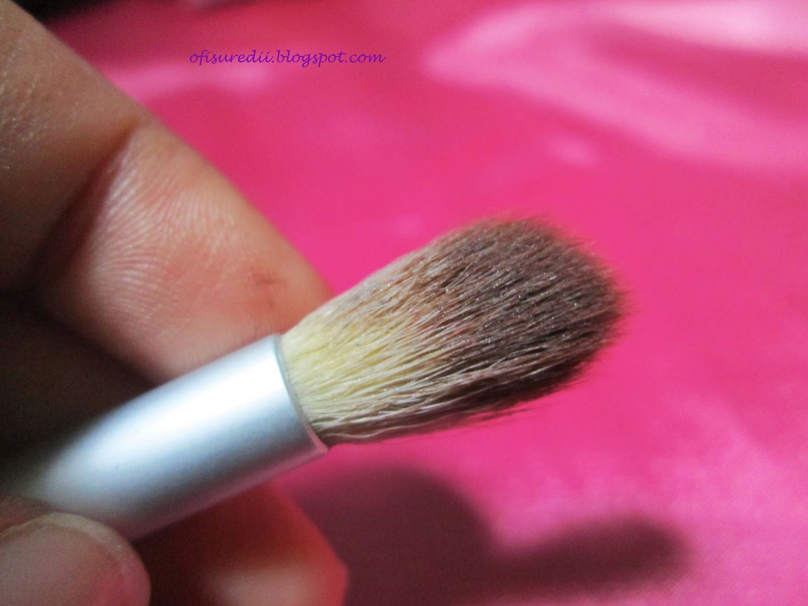 Ecotools And Masami Shouko Brushes Ofisu Redii Eye Shading Brush