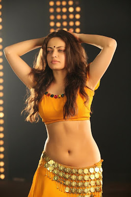 Sneha Ullal – Spicy Pics from Action 3D
