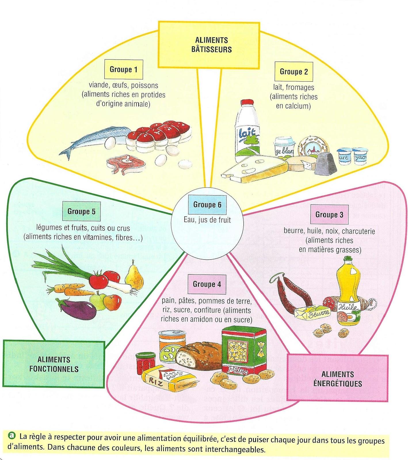 cours de p tisserie gratuits les principes alimentaires les nutriments. Black Bedroom Furniture Sets. Home Design Ideas