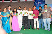 33 Prema Kathalu Audio launch photos-thumbnail-3