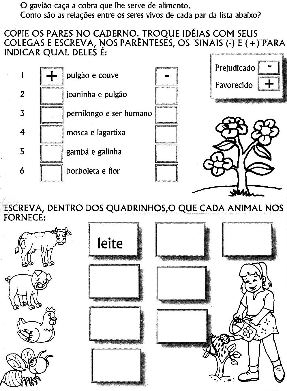 95 ATIVIDADES EDUCA    O INFANTIL MEIO AMBIENTE ECOLOGIA SERES VIVOS