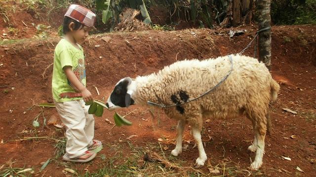 Tiga Cara Ajarkan Kebaikan Berkurban Untuk Anak