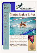 Newsletter nº 28 - Janeiro/2015