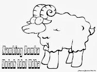 Gambar Kambing Domba Untuk Idul Adha