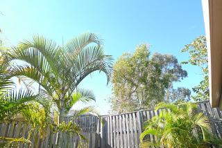 Brisbane Sunny Day