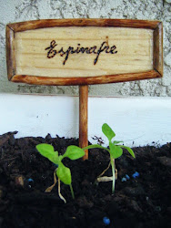 Tabuleta espinafre