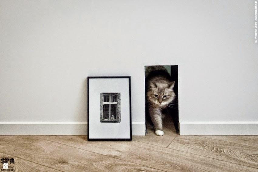Hasta el gato tiene su espacio decó,Reforma en 80 m2, post de HABITAN2